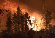 incendios en Vilia