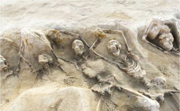 esqueletos griegos